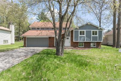 West Bloomfield Twp Single Family Home For Sale: 2169 Mapesbury Drive