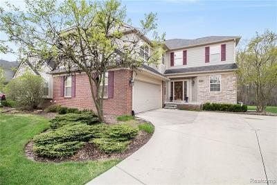 Rochester Hills Condo/Townhouse For Sale: 3694 Winding Brook Circle