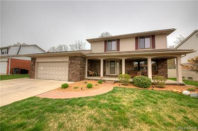 Riverview Single Family Home For Sale: 18220 Ryanwood Drive