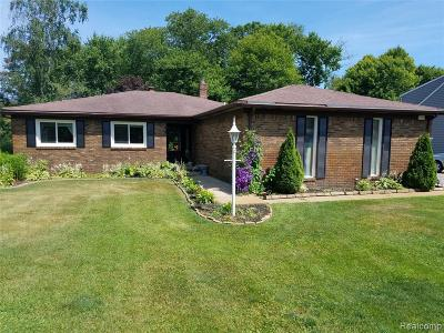 Commerce Twp Single Family Home For Sale: 6184 Venice Drive