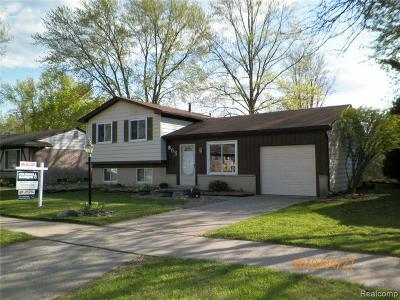 Canton, Canton Twp Single Family Home For Sale: 668 Georgetown Street