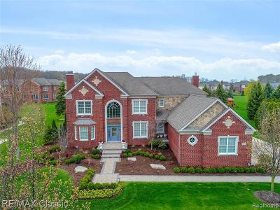 Novi Single Family Home For Sale: 50723 Drakes Bay Drive
