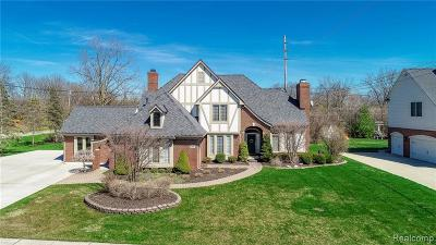 Grosse Ile Twp Single Family Home For Sale: 23281 Fairway Drive