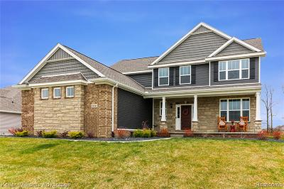 Hartland Twp Single Family Home For Sale: 2200 Walnut View Drive