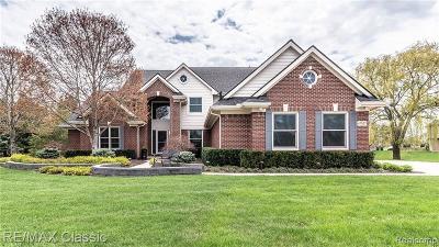 Novi Single Family Home For Sale: 47527 Greenwich Drive