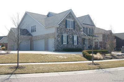 Novi Single Family Home For Sale: 24844 Mallard Trail Lane