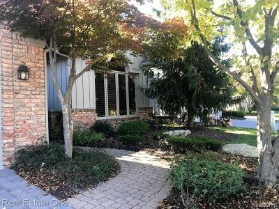 West Bloomfield Twp Condo/Townhouse For Sale: 7083 Daventry Woods Drive