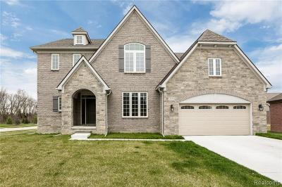 Rochester Hills Single Family Home For Sale: 3856 Somerset Circle