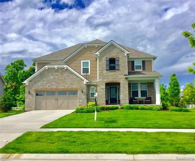 Lake Orion, Orion Twp, Orion Single Family Home For Sale: 366 Findley Circle
