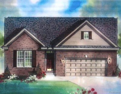 Sterling Heights Single Family Home For Sale: 12209 Lincolnshire Drive