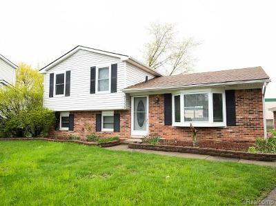 Canton, Canton Twp Single Family Home For Sale: 41559 Wayside Drive