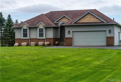 Brandon Twp Single Family Home For Sale: 5154 Oakwood Road