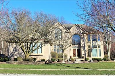 Novi Single Family Home For Sale: 21360 Chase Drive