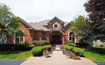 West Bloomfield Single Family Home For Sale: 3294 Long Meadow Court