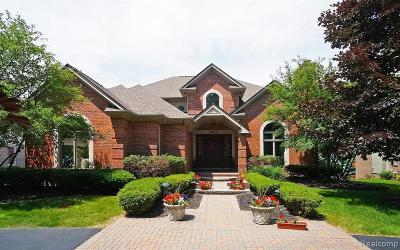 Bloomfield, Bloomfield Hills, Bloomfield Twp, West Bloomfield, West Bloomfield Twp Single Family Home For Sale: 3294 Long Meadow Court