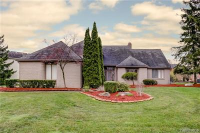 West Bloomfield Twp Single Family Home For Sale: 4875 Fairview Court