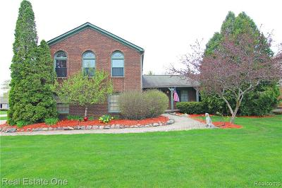 West Bloomfield Twp Single Family Home Contingent - Continue To Show: 2170 Kolomyia Street