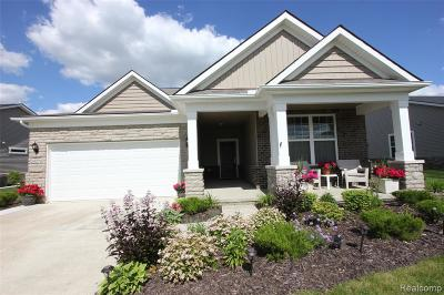 Brownstown, Brownstown Twp Single Family Home For Sale: 24279 Walloon Way