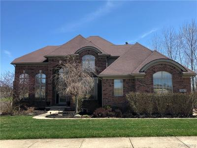 Commerce Twp Single Family Home For Sale: 3067 Ivy Hill Drive
