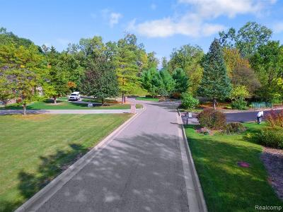 Southfield Residential Lots & Land For Sale: Parcel A Lilac Lane