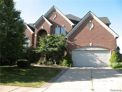 Novi Single Family Home For Sale: 24345 Thatcher Drive