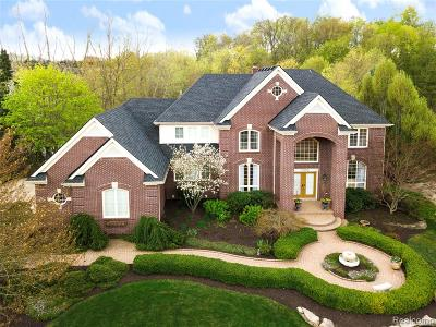 Northville Single Family Home For Sale: 17890 Cranbrook Court