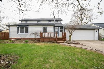 Huron Twp Single Family Home For Sale: 21165 Isabelle Street
