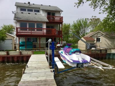 Monroe County Single Family Home For Sale: 6488 Brancheau Road