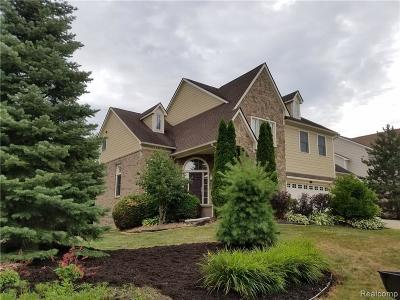 Novi Single Family Home For Sale: 45007 Cobblestone