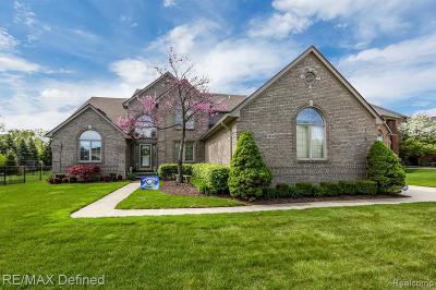 Washington Twp Single Family Home For Sale: 13532 Scenic Hollow Drive