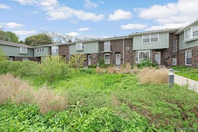Ann Arbor Condo/Townhouse For Sale: 2842 Page Avenue #11