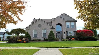 Canton Single Family Home For Sale: 499 Springfield Drive