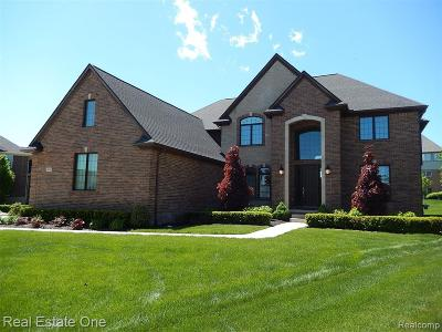 Northville Single Family Home For Sale: 18834 Marble Head Drive