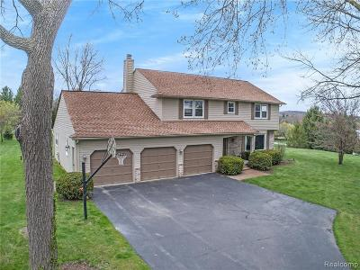 Independence Twp MI Single Family Home For Sale: $419,900