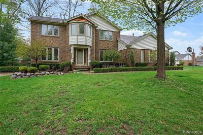 Livonia Single Family Home For Sale: 18601 Blue Skies Court