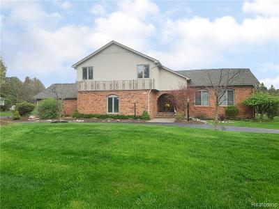 Rochester Hills Single Family Home For Sale: 2602 New England Drive
