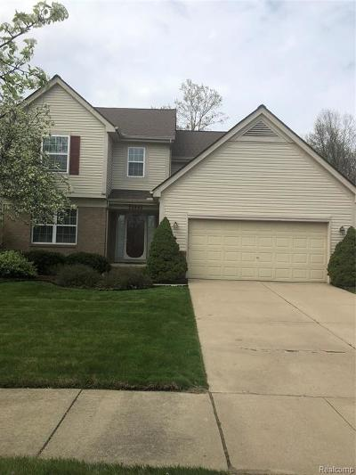 Romulus Single Family Home For Sale: 32862 Sand Piper Drive