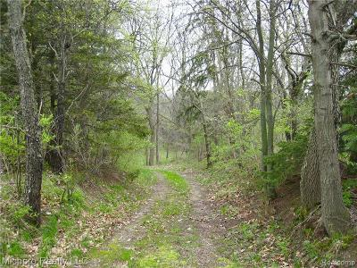 Residential Lots & Land For Sale: Parcel 2 S Lapeer Road