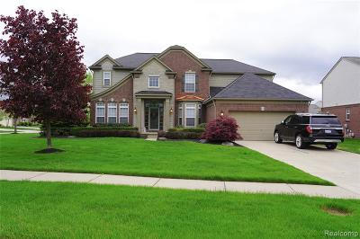 Northville Single Family Home For Sale: 16327 Johnson Creek Drive