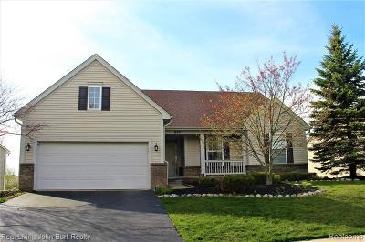 Oxford Single Family Home For Sale: 860 Island Lake Drive