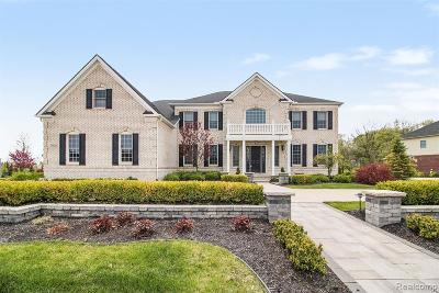 Northville Single Family Home For Sale: 50745 Briar Ridge Lane