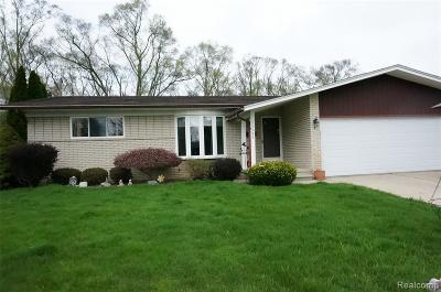 Sterling Heights Single Family Home For Sale: 11139 Wilseck Court