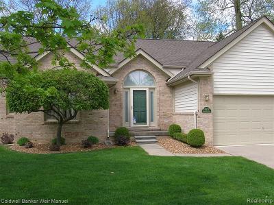 Northville Condo/Townhouse For Sale: 41638 Hidden Oaks Court #30