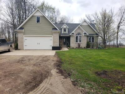 Imlay Twp MI Single Family Home For Sale: $314,900