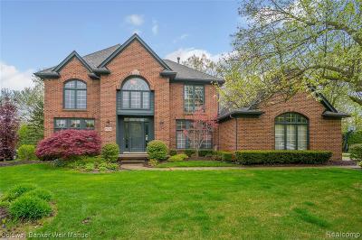 Novi Single Family Home For Sale: 25730 Arcadia Drive