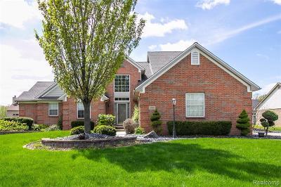 Canton Single Family Home For Sale: 2592 Shagbark Court