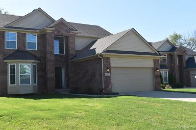 Belleville, Belleville-vanbure, Bellleville, Van Buren, Van Buren Twp, Van Buren Twp., Vanburen Single Family Home For Sale: 10138 Rolan Meadows Drive