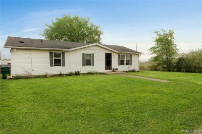 Romulus Single Family Home For Sale: 7063 Sargent Street