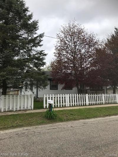 Ortonville Single Family Home For Sale: 111 James Street
