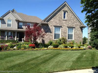Oxford Single Family Home For Sale: 382 Franklin Lake Circle